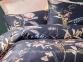 Постельное белье сатин люкс Issimo Home Protea семейное 2